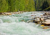 Mountain River By Sunny Day
