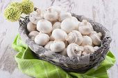 foto of agaricus  - A close up photo of a edible mushrooms known as Agaricus in a basket on a bright solid background - JPG
