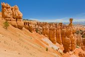 Bryce Canyon Under The Blue Sky