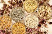 Healing Herbs In Glass Cups,top View, Herbal Medicine