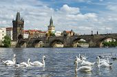 picture of old bridge  - View of the Charles Bridge in Prague - JPG