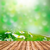 Background room interior. Fresh spring green and flowers field grass with green bokeh and sunlight and wood floor.