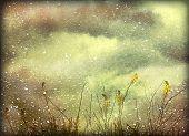 Dreamy Grunge Nature Background