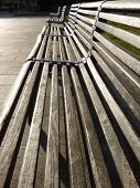 Park Benches In The Sun