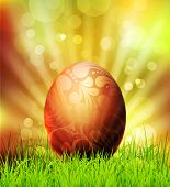 vector easter egg on grass background and bokeh