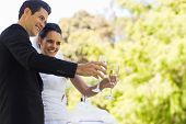 Happy young newlywed couple toasting champagne flutes besides cake at the park