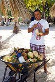 Man Cutting Coconuts, Dominican Republic