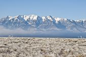 picture of sagebrush  - Fog skirts the sagebrush steppe and foothills of the snow  - JPG