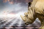 stock photo of rhino  - Powerful rhino - JPG