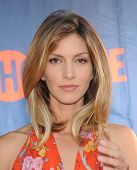 LOS ANGELES - JUL 17:  Dawn Olivieri arrives to the CBS-CW-Showtime Summer TCA Press Tour 2014  on July7, 2014 in West Hollywood, CA.