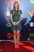 LOS ANGELES - JUL 17:  A.J. Cook arrives to the CBS-CW-Showtime Summer TCA Press Tour 2014  on July7, 2014 in West Hollywood, CA.