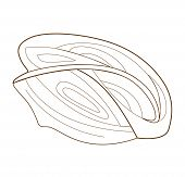 bicycle helmet isolated on white background (vector illustration)