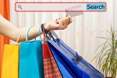 Girl Showing Shopping Bags With Search Bar. Concept Of On Line Shopping
