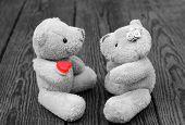 Toys Bears In Love