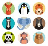 Set of vector animal icons in round buttons