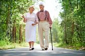 picture of retirement age  - Senior couple walking in park - JPG