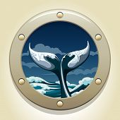 stock photo of whale-tail  - A vector illustration of whale tail in a ship window - JPG