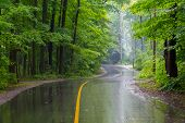 Rural Road On A Rainy Day