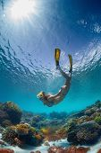 Underwater shot of the young lady gliding over vivid coral reef on a breath hold