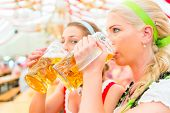 Women drinking Bavarian beer in tent on Oktoberfest or dult wearing dirndl