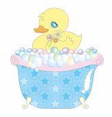 Baby duck in bathtub