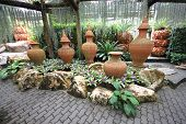 A composition of pots with flower-beds in the Nong Nooch tropical botanic garden near Pattaya city i
