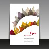 Flyer or Cover Design - Autumn Leaves