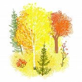 Vector background with autumn forest