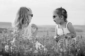 stock photo of lavender field  - Two funny little girls play in a lavender field  - JPG