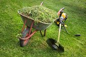 Wheelbarrow With Grass And The Trimmer