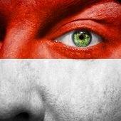 Monaco Flag Painted On Mans Face