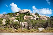 Cactus growing on the Ayo Rock formations, a group of monolithic rock boulders near Ayo village in A