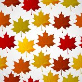 Abstract background with autumn colorful leaves.