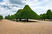 Great Fountain Garden at Hampton Court Palace near London, UK