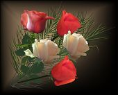illustration with rose flowers on dark background