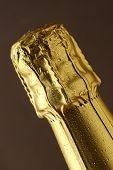 Champagne Foil Top