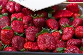 Strawberries For Sale At Market