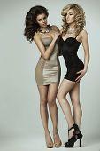 Two Beauty Ladies In Lingerie