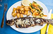 grilled fish and vegetables-french cuisine dish with many vegetables