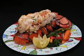 picture of lobster tail  - Lobster Tail - JPG