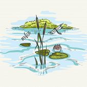 Natural Background Of Green Reeds