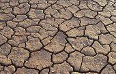 Cracked earth in desert full frame