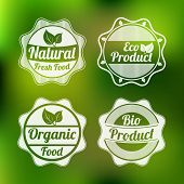 Set of four badges of natural fresh food, eco product, organic food and bio product on stylish green background.