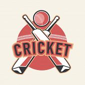 Stylish sticker, tag or label design for Cricket sports concept.