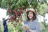 young pretty woman and litchis in orchard