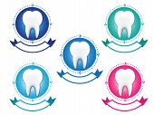 Tooth banner set