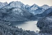 image of bavarian alps  - Schwansee at wintertime - JPG