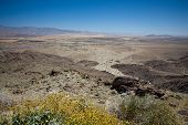 stock photo of anza  - Anza Borrego desert and state park with the city of Borrego Springs in the valley framed by yellow bush - JPG