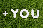 You Text Made Of White Wood Vector Design Element On Grass Background.