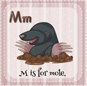 Illustration of an alphabet M is for mole